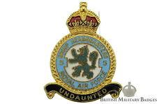 Queens Crown: Royal Air Force 5 Group Headquarters Squadron Unit RAF Lapel Badge