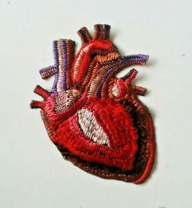 X-Ray Anatomical Heart Embroidered Patch Iron On Sew On Made in USA