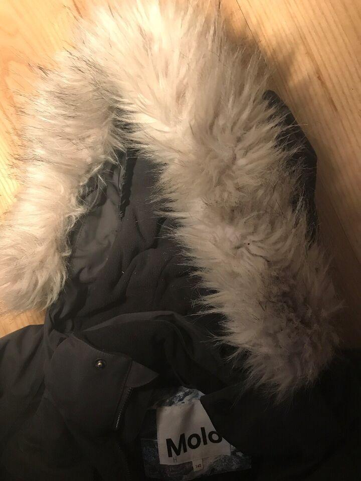 Vinterjakke, Varm, Molo