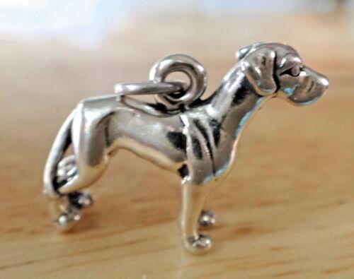Sterling Silver 3D 16x21mm détaillée Great Dane Dog Charm