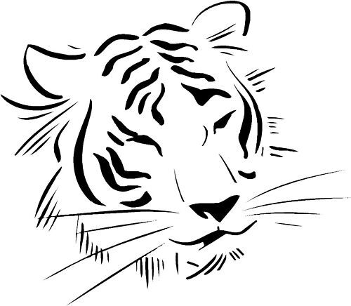 Tiger Cat Face Car,Camper Van Window Sticker Decals