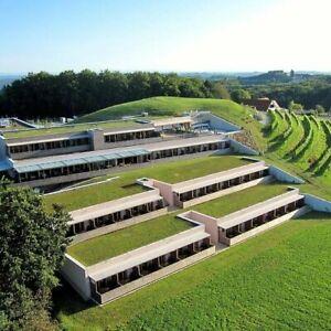 3 Tage Wellness Kurzurlaub Genuss Hotel Riegersburg 4* inkl. HP Steiermark Reise