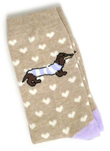 Femme Classique love coeurs beige teckel chien chaussettes UK 4-8 EUR 37-42 USA 6-10