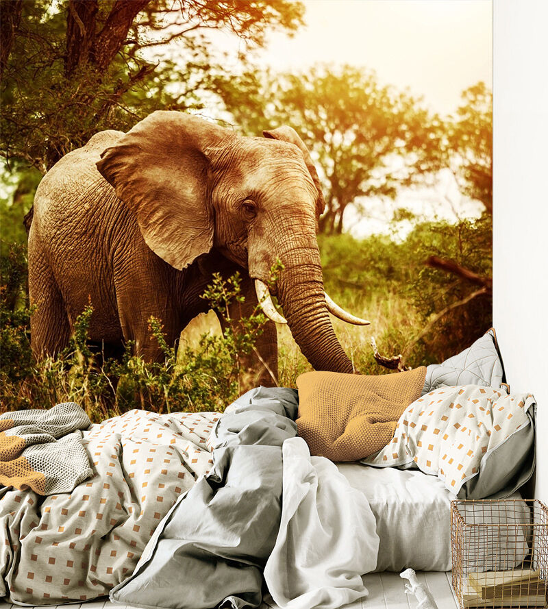 3D Tree Sunny Elephant 885 Wallpaper Mural Paper Wall Print Wallpaper Murals UK