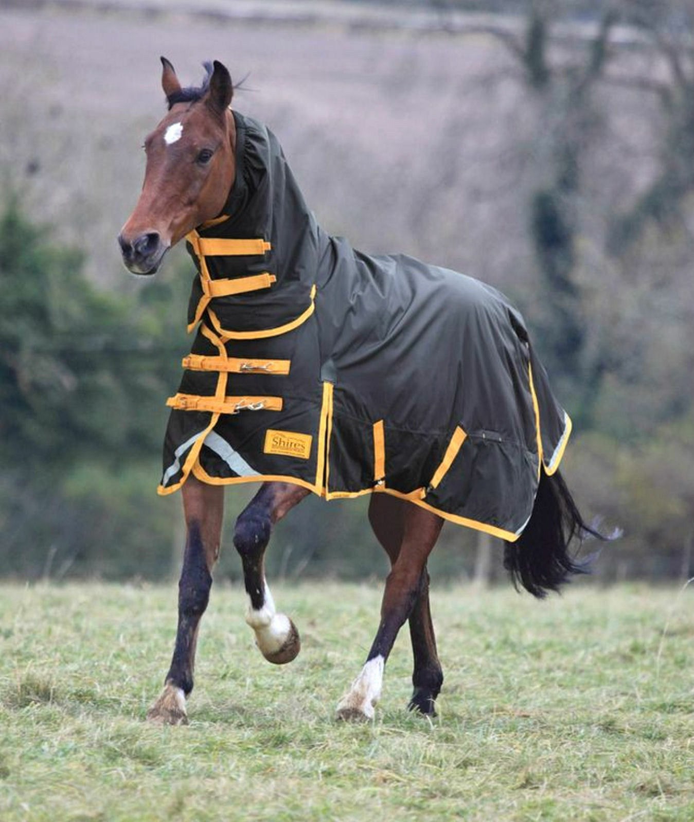 New shires combo stormbreaker combo shires heavyweight 300g winter turnout rug CLEARANCE 3360b6
