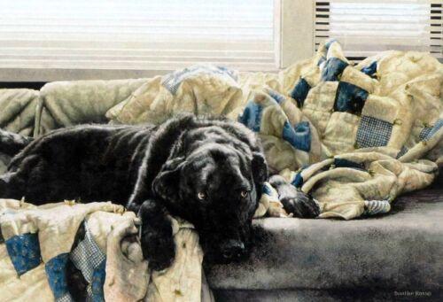 Guilty Pleasures by Sueellen Ross Dog Print
