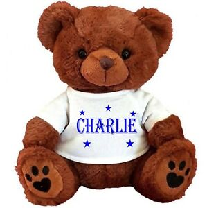 """PERSONALISED TEDDY BEAR BROWN 25CM/10"""" SITTING  BIRTHDAY PAGEBOY  ANY OCCASION"""