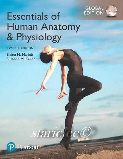 NEW 3 Days AUS Essentials of Human Anatomy & Physiology 12E Marieb Paperback Ed