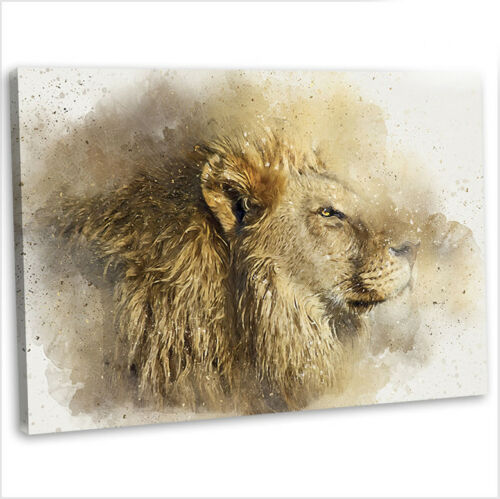 Lion Male Abstract Watercolour Canvas Print Framed Animal Wall Art Picture 2