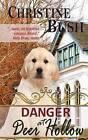 Danger at Deer Hollow by Christine Bush (Paperback / softback, 2011)