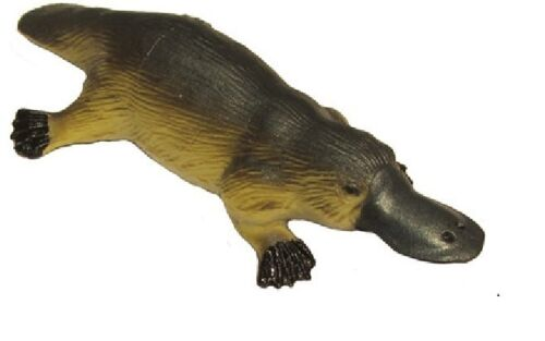 Australienne ornithorynque 9 cm Animals Of Australia Science and Nature 75455