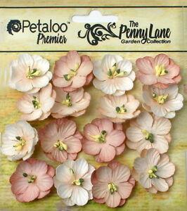 Forget-Me-Nots-ANTIQUE-BEIGE-16-Paper-Flowers-20-24mm-across-Penny-Lane-Petaloo