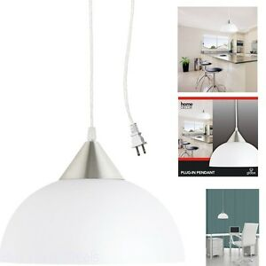 Details About 1 Ceiling Lamp Light Portable Hanging Plug In Pendant White Shade Swag Hooks New