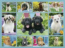 NEW! Ravensburger Puppy Love 500 piece dogs puppies jigsaw puzzle 14708