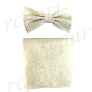 New formal men/'s pre tied Bow tie /& hankie set paisley pattern ivory wedding
