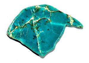 """Natural """"CARCIO LAKE TURQUIOSE"""" 61.85 CT Slab Drilled Untreated AGSL Certified"""