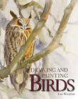 Drawing and Painting Birds by Tim Wootton (Paperback, 2010)