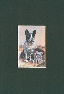 French-Bulldog-Dog-Art-Print-CLEARANCE