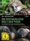 360° - GEO-Reportage: Die erstaunliche Welt der Tiere (2012)