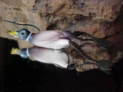 "SAVAGE GEAR 3/"" MALLARD 3D HOLLO BODY FRUCK Floating Fishing Lure HD-75-AM"