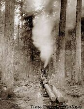 Logging Locomotive, Columbia & Nehalem Valley Railroad 1900-Historic Photo Print