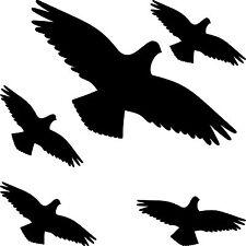 Set Aufkleber Habicht schwarz Vogel Glas Scheibe Schreck Abwehr Schutz Deko Bild