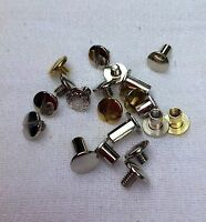 Assorted Silver & Brass Replacement Chicago Screws Bridle & Leather Repair 20 Pc