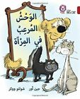 Collins Big Cat Arabic Readers: Monster in the Mirror: Level 14 by Jean Ure (Paperback, 2015)
