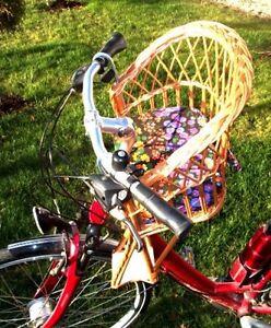 fahrradsitz fahrradkorb kinderfahrradsitz ddr weide vorne lenker ohne kissen ebay. Black Bedroom Furniture Sets. Home Design Ideas