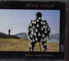 Pink Floyd-Delicate Sound Of Thunder 2 cd album incl booklett