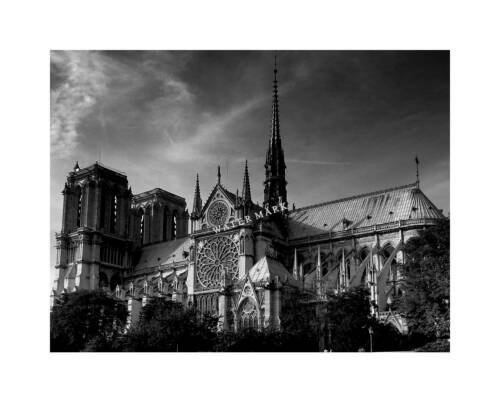 Notre Dame Cathedral 8x10 Photo Print Paris France black /& white French catholic