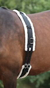 SALE-Shires-Adjustable-Lunging-Lunge-Roller-Soft-Fleece-Padding-With-Girth-Black