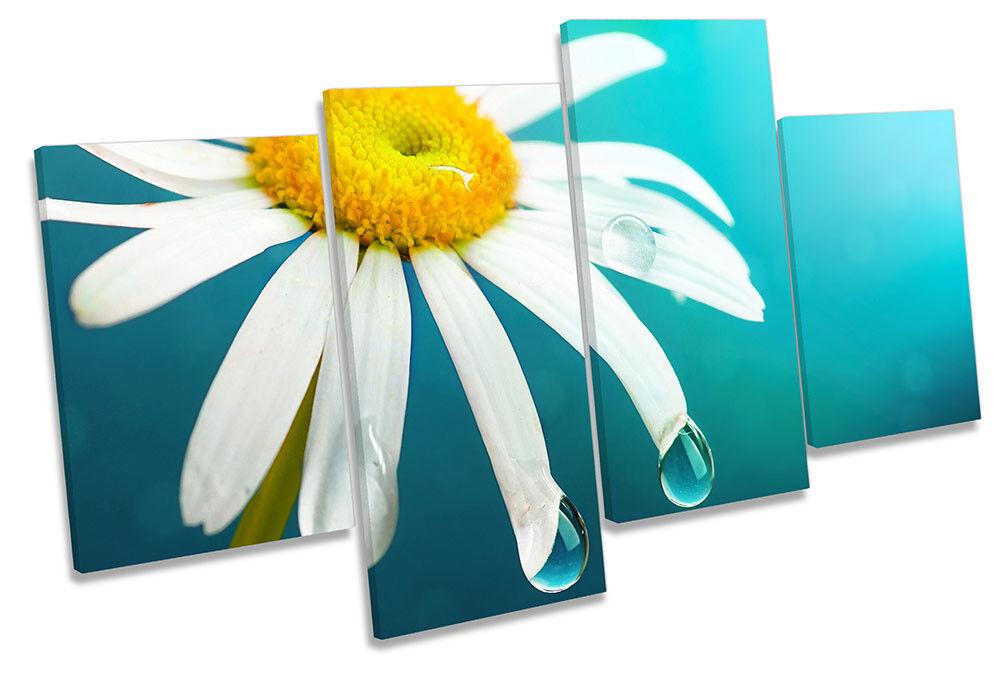 Daisy Flor Azul floral impresión de múltiples enmarcado LONA pa rojo  arte enmarcado múltiples 97284f
