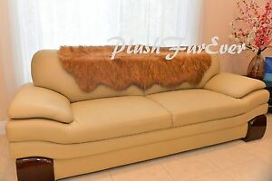 Image Is Loading 24x59 Grizzly Bear Slipcovers Sofa Couch Back Cover