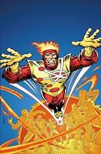 Firestorm: the Nuclear Man by Gerry Conway (2017, Paperback)