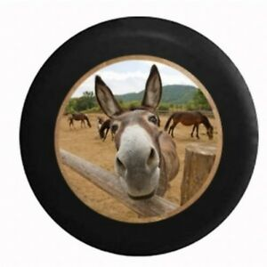 Curious-Donkey-Mule-Horse-Looking-over-Split-Log-Fence-Spare-Jeep-Tire-Cover