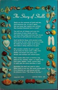 1034-Postcard-The-Story-of-Shells
