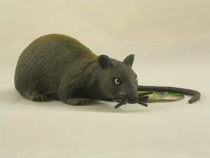 image is loading 13cm rubber stretchy rat with long tail halloween