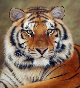Tiger B//W Cross Stitch Chart  BUY 1 GET 1 HALF PRICE