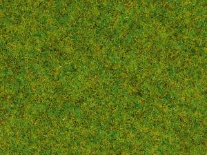 NOCH-08200-Gauge-H0-N-Z-Scatter-Grass-Spring-Meadow-20g-100g-11-50Euro
