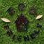 Hemway-Eco-Friendly-Glitter-Biodegradable-Cosmetic-Safe-amp-Craft-1-24-034-100g thumbnail 47