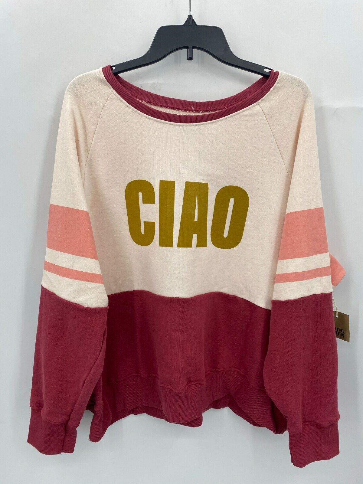 Anthropologie Back When Plus 1X Ciao Graphic Sweatshirt Pink Colorblock NWT