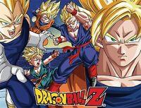 Dragon Ball Z: Super Saiyan Group Sublimation Throw Blanket