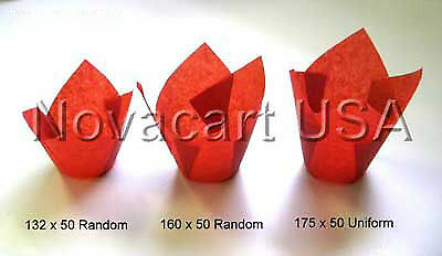 Novacart rouge Tulip jetables Baking Cup Case of 2000
