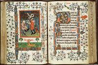 Illuminated Vellum Manuscript Art Instructn Images Cd