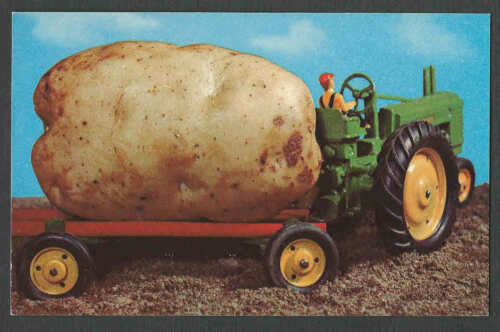 Ca 1948 PPC GIGANTIC POTATO IN TINY TOY TRACTOR MINT