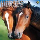 2016 Horses Wall Calendar by TF Publishing