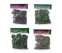 Fluker's Repta Vine Terrarium Plant Red, Purple Coleus, Pothos, Ivy 6 Ft