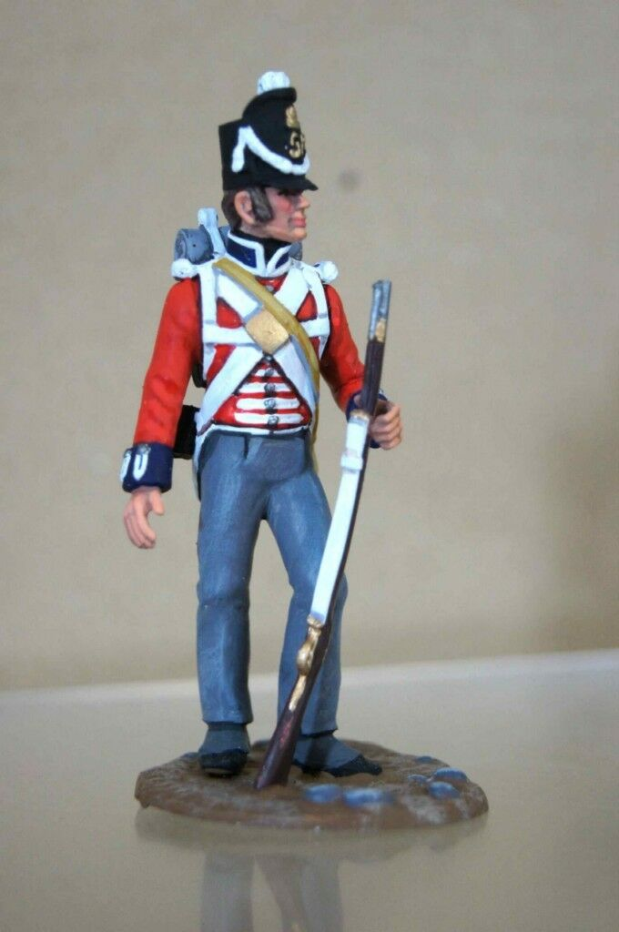 Traditioneller Stadden 65mm Waterloo Britisch Coldstream Schutz 1815 Studio