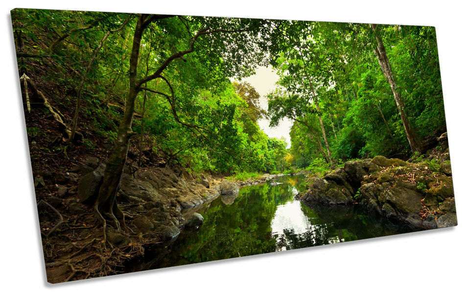 Grün Forest River Woods CANVAS ART Print Panoramic Picture